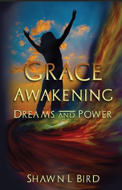 My novel series: Grace Awakening (1/6)