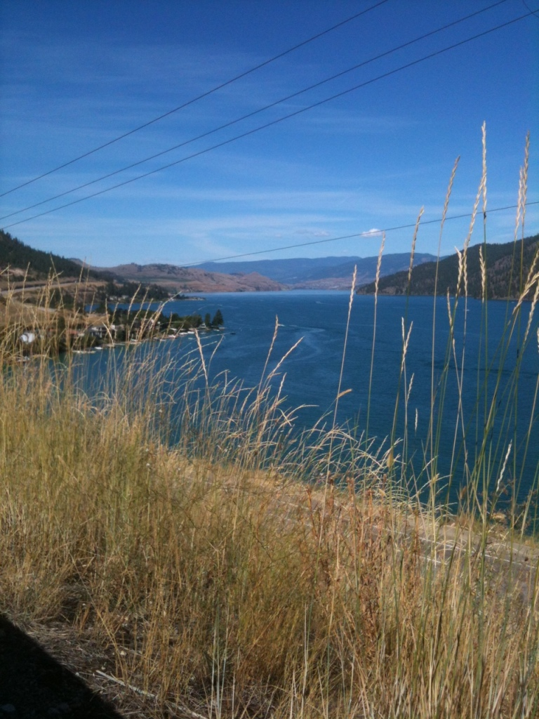 Kal Lake grass forefront
